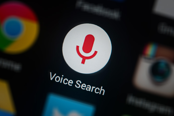 Google Voice search - What if Google was not there
