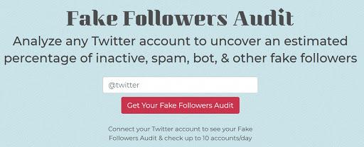 Fake Follower Audit